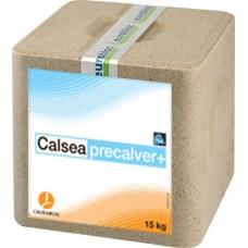 Calsea PreCalver Block 15kg Lick