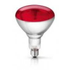 Philips Infrared Bulb 250W