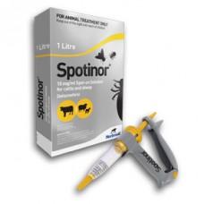 Spotinor